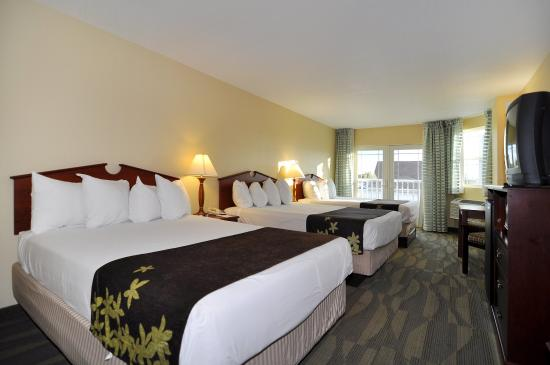 Photo of BEST WESTERN Gold Leaf Rehoboth Beach