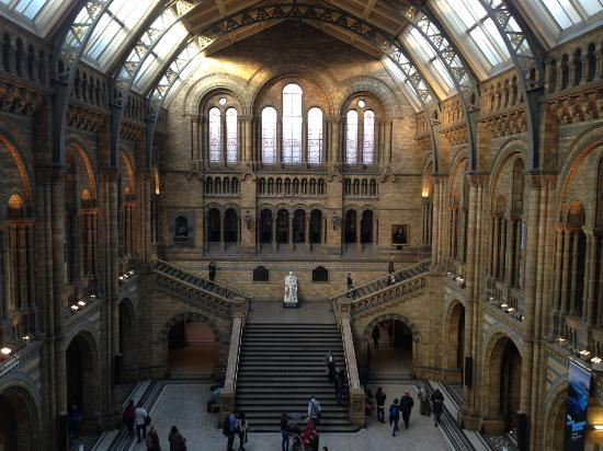Foyer Museum Uk : Foyer picture of natural history museum london