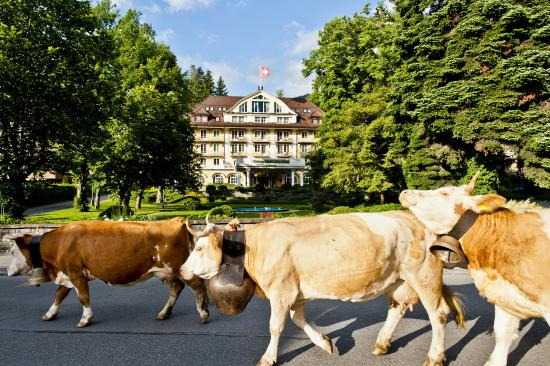 Photo of Le Grand Bellevue Gstaad