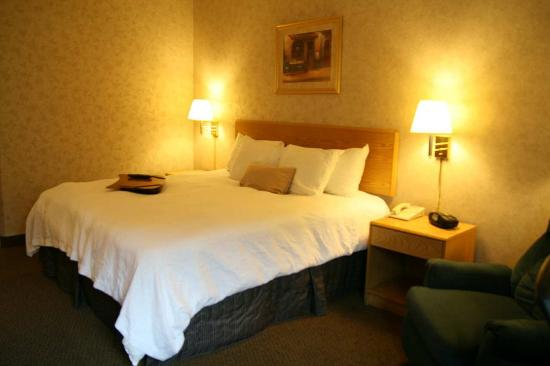 Hampton Inn Syracuse North (Airport Area)