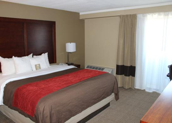 Photo of Comfort Inn Central Denver