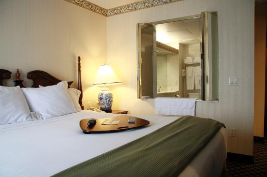Hotels With Jacuzzi In Room In Dearborn Michigan