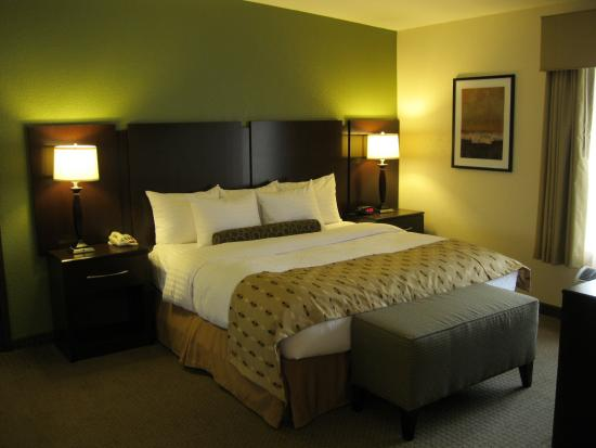 Photo of BEST WESTERN PLUS Antioch Hotel & Suites