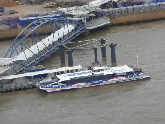 MBNA Thames Clippers - Picture of MBNA Thames Clippers