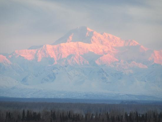Denali Overlook Inn