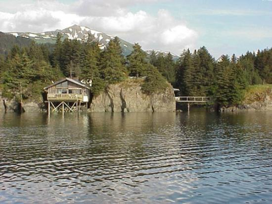 Photo of Dancing Eagles Cabin and Bed and Breakfast Seldovia