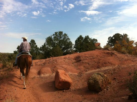 Academy Riding Stables Tour Of Garden Of The Gods Picture Of Academy Riding Stables Colorado