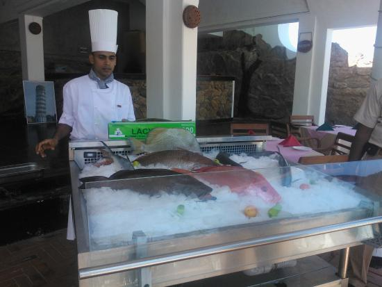Daily fresh fish you can choose from picture of for Daily fresh fish