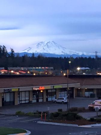 Hotel Near Seatac With Shuttle To Airport