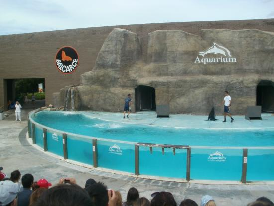 Mar del Plata Aquarium - Picture of Mar del Plata Aquarium, Mar del ...