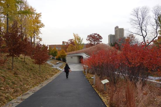 Bbg In November Picture Of Brooklyn New York Tripadvisor