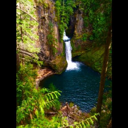 Roseburg, OR: Toketee Falls, located near the springs