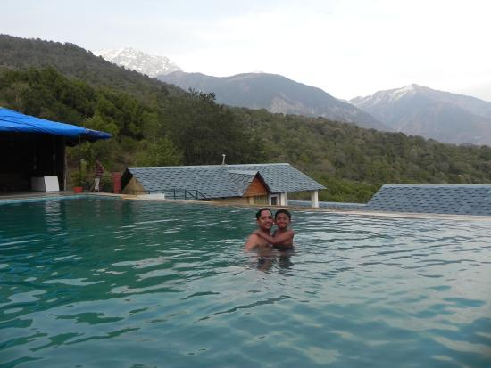 swimming pool picture of the exotica dharamshala dharamsala tripadvisor