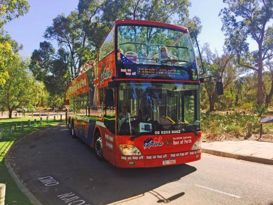 City Sightseeing Perth