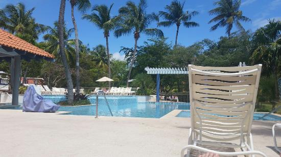 What Can We Say Picture Of Wyndham Garden At Palmas Del Mar Humacao Tripadvisor