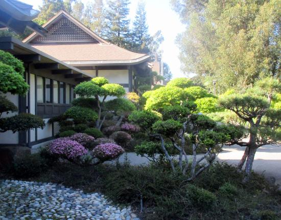 Hayward Japanese Gardens Ca Address Phone Number Top