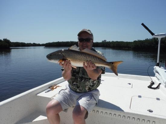 Oversized red fish picture of crystal river fishing for Crystal river fl fishing report