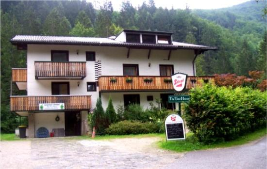 Photo of The Treehouse Backpacker Hotel Grünau im Almtal