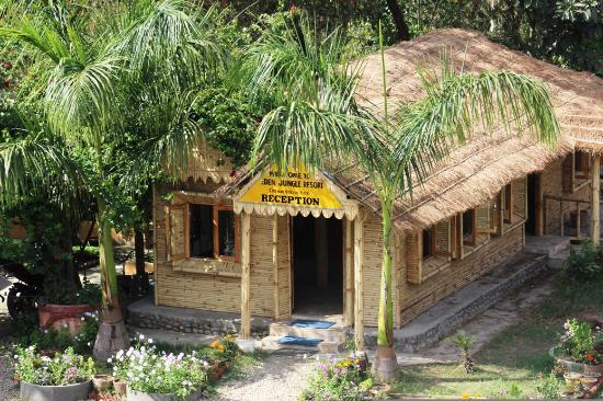 Photo of Eden Jungle Resort Sauraha
