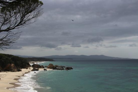 Mallacoota Coastal Walks Australia Top Tips Before You