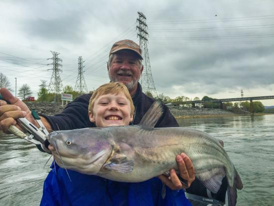 14 pound catfish picture of scenic city fishing charters for Tennessee fishing guide