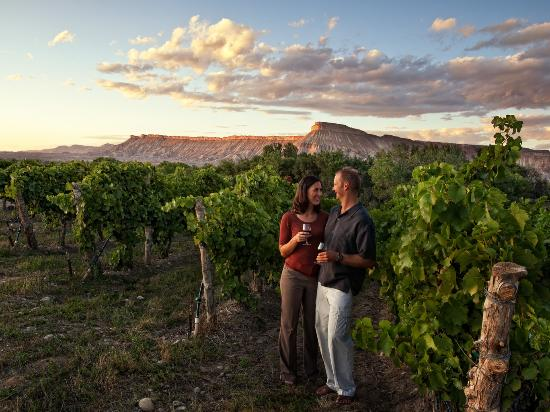 Grand Junction, CO: The beauty of Colorado's Wine Country