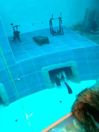 Schema tecnico piscina picture of y 40 the deep joy for Piscina y 40 italia
