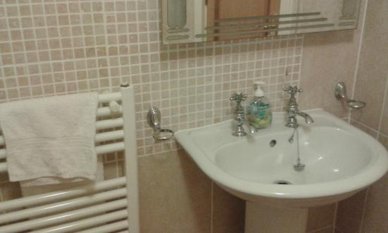 Alverna House B&B: bathroom besides play room for the guests