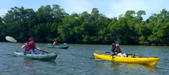 Rookery Bay Tours