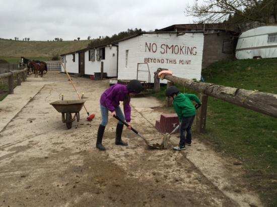 White Horse Trekking and Carriage Driving Centre