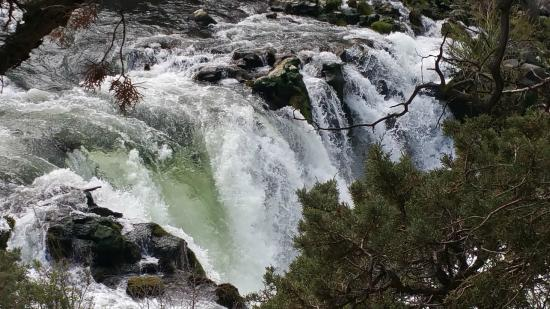 Where The Falls Flow Picture Of Steelhead Falls Crooked River Ranch Tripadvisor