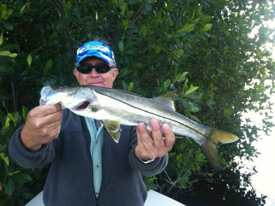 First snook on the fly picture of everglades sight for Everglades city fishing