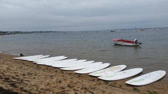 Paddle Board Yoga Class Is Ready Picture Of Provincetown
