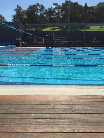 Clean Clear Water Of The Pool Picture Of Andrew Boy Charlton Pool New South Wales
