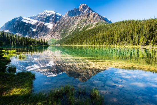Canadian Rockies, Canada: Shared by Jeff Bartlett at Cavell Lake