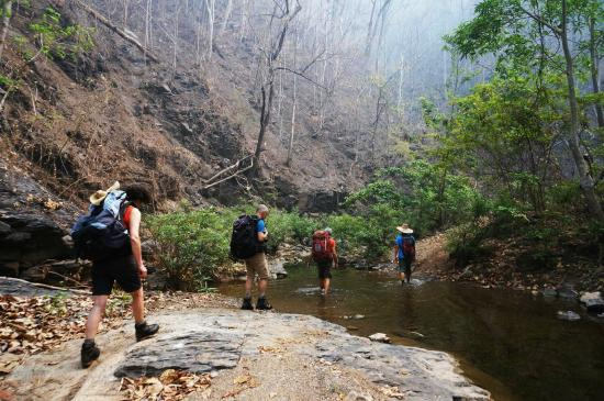 Trekking - Picture of Mae Sariang Day Tours, Mae Sariang ...