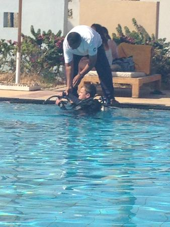 Dive centre picture of reef oasis dive club sharm el - Reef oasis dive club ...