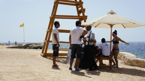 Rodc team picture of reef oasis dive club sharm el - Reef oasis dive club ...