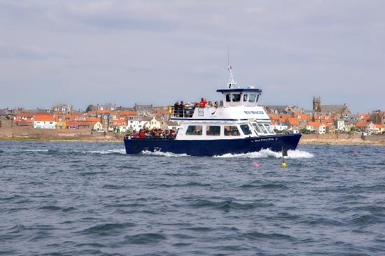 Anstruther Pleasure Cruises-Boat Day Tours