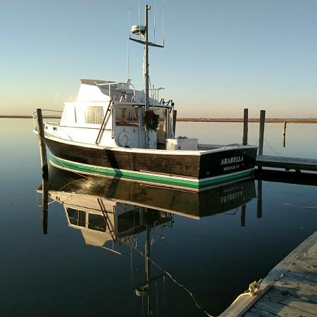 Blue crush charters montauk ny address phone number for Charter fishing boats long island
