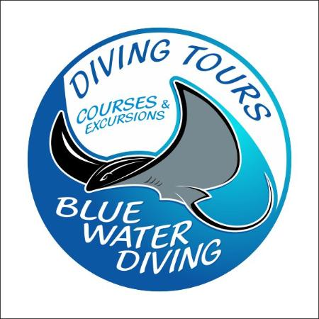 Blue Water Diving - Day Class