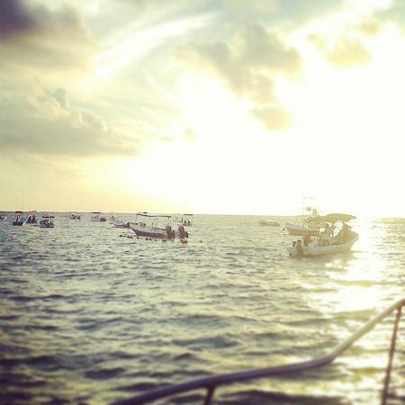Morning start to fishing picture of the rusty hook playa for Playa del carmen fishing charters