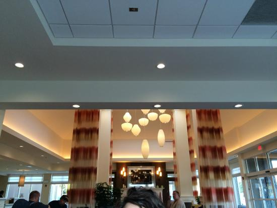 Interesting Light Fixture In The Lobby Picture Of Hilton Garden Inn Charlotte Airport