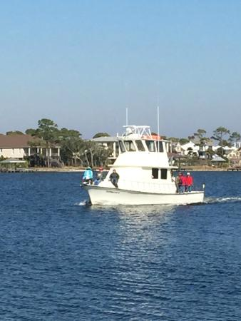 Deep sea fishing alabama picture of orange beach for Fishing orange beach al