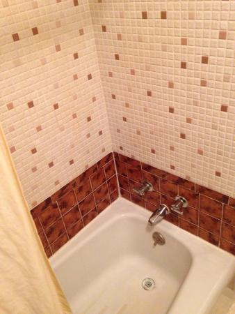 Albion, MI: Shower and tub