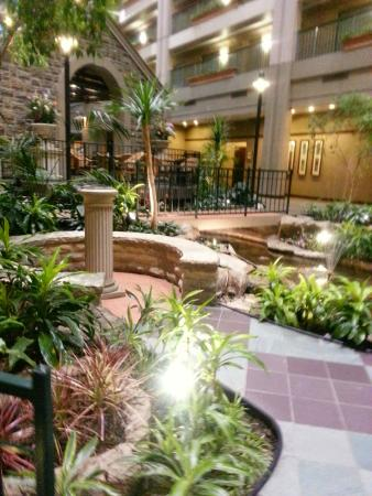 View Of Their Indoor Garden Picture Of Embassy Suites By Hilton Chicago Lombard Oak Brook