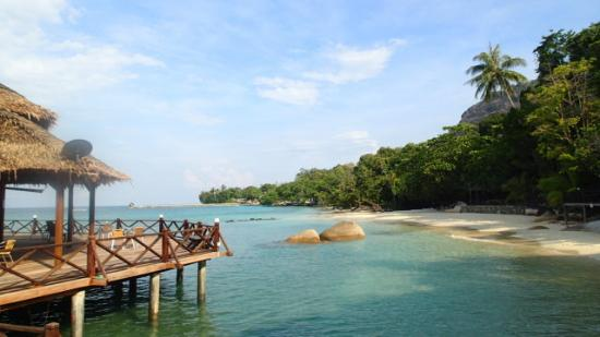 Bagus Place Retreat: Another Day in Paradise