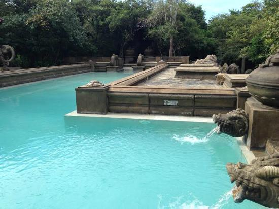 The Stunning Pool And Poolside Area Picture Of Forest