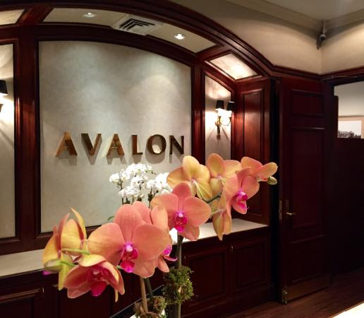 Photo of Avalon Hotel New York City