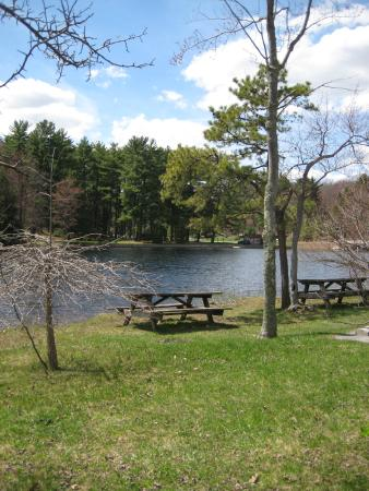 Philipsburg, PA: Black Moshannon Lake
